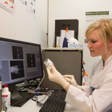 Neue Forschungsergebnisse in der Radiologie